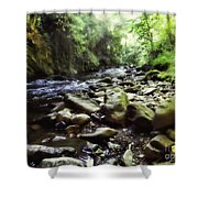 Natural Place Shower Curtain