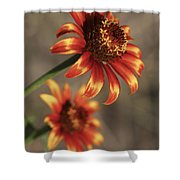 Natural Posing Beauty Shower Curtain