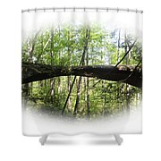 Natural Rock Bridge  Shower Curtain