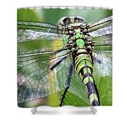 Natural Stained Glass Shower Curtain