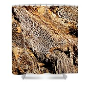 Natural Textural Abstract Shower Curtain