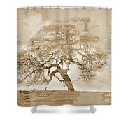 Natural Tree Shower Curtain