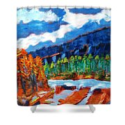 Naturals Shower Curtain