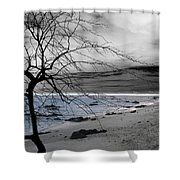 Nature - Sad Tree Shower Curtain