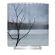 Nature -  The Naked Tree Shower Curtain