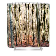 Nature 11 Shower Curtain