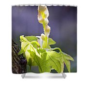 Nature 18 Shower Curtain