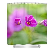 Nature 9 Shower Curtain
