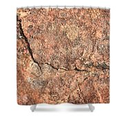Nature Abstract - Cracked Shower Curtain