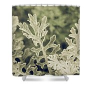 Nature Abstract 3 Shower Curtain