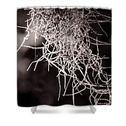 Nature Abstract  Black And White Shower Curtain