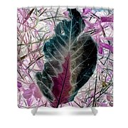 Nature Abstract Of Leaf And Grass Shower Curtain