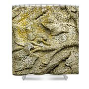 Intertwining With Nature Shower Curtain