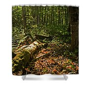 Nature At Work Shower Curtain