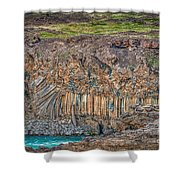 Nature Carvings Shower Curtain