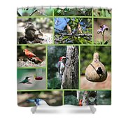 Nature Collage Shower Curtain