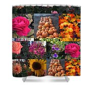 Nature Color Shower Curtain