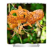Nature Floral Orange Tiger Lily Flowers Baslee Troutman Shower Curtain