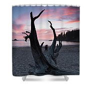 Nature Framed Shower Curtain