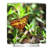 Nature From South Carolina Shower Curtain