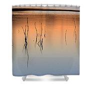 Nature Graphics  Shower Curtain
