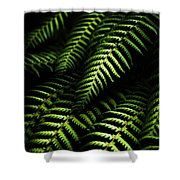Nature In Minimalism Shower Curtain
