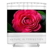 Nature In Perfection Poster Shower Curtain