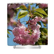 Nature In Pink Shower Curtain