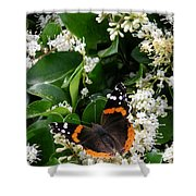 Nature In The Wild - A Sweet Stop Shower Curtain