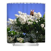 Nature In The Wild - Bathing In Blooms Shower Curtain