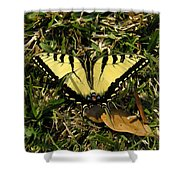 Nature In The Wild - Splendor In The Grass Shower Curtain