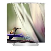 Nature Marvel Shower Curtain