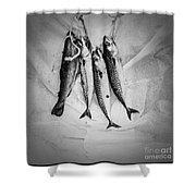 Nature Morte Dans Le Cuisine - Still Life In The Kitchen. Shower Curtain