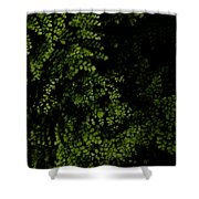 Nature Plants Shower Curtain