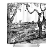 Nature Sketch Shower Curtain