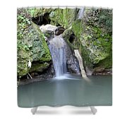 Nature Spring Scene Creek Shower Curtain