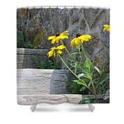 Nature Steps It Up Shower Curtain