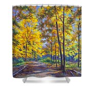 Nature Trail Turn Of Autumn Shower Curtain by Fiona Craig