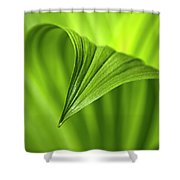Nature Unfurls Shower Curtain by Christina Rollo