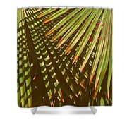 Nature Up Close 6 Shower Curtain