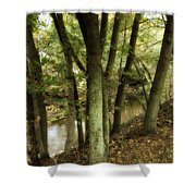 Nature Walk Along The Stream Shower Curtain