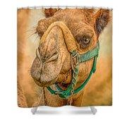 Nature Wear Camel Shower Curtain