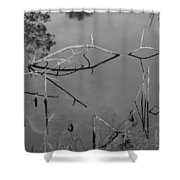 Natures Bridge Shower Curtain