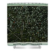 Nature's Christmas Lights Shower Curtain