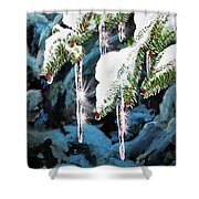 Nature's Decorations Shower Curtain