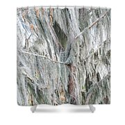 Natures Drapery At Okefenokee Swamp Shower Curtain