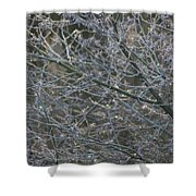 Natures Fairy Lights Shower Curtain
