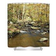 Nature's Finest 5 - Ricketts Glen Shower Curtain