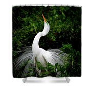 Nature's Glory Shower Curtain