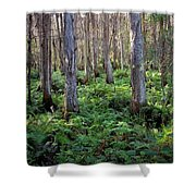 Nature's Heartbeat Shower Curtain